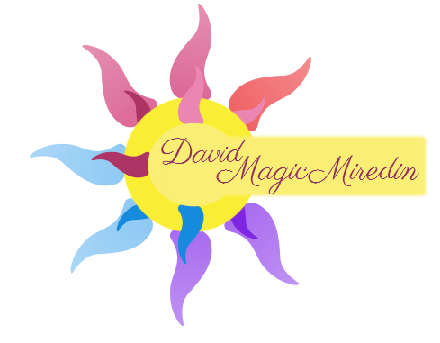 Logo des Sportstudio David Magic Mirédin